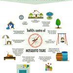 Información para actuar contra el Mosquito Tigre